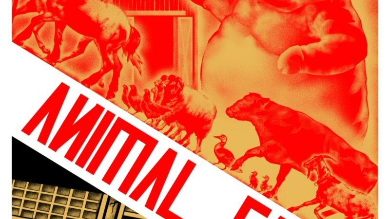 Animal Farm, Republik Para Binatang